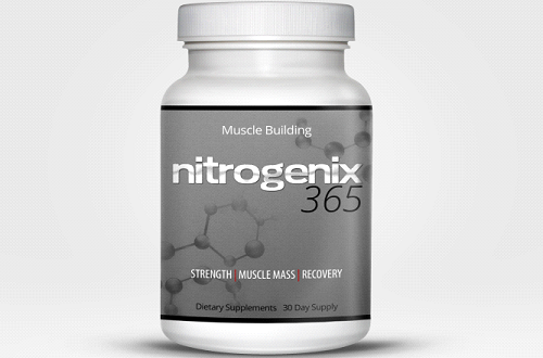 The Best Muscle Building Supplements