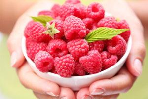 Raspberry Ketone Ingredients
