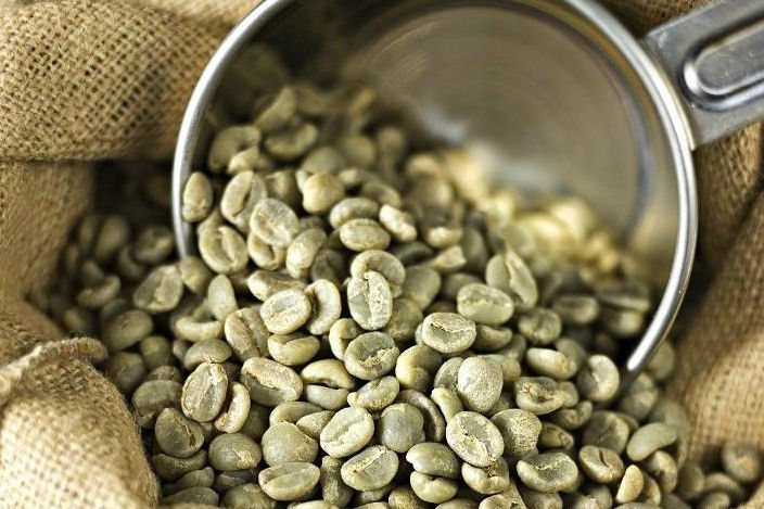 Review of Whole Body Green Coffee Bean Extract