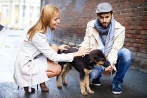 man who takes Progentra impresses woman and pets puppy